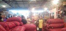 Ditugasi Impor Bawang, Bulog Negosiasi Dengan 4 Negara Ini