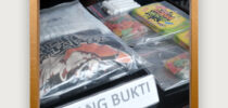 Sinergi Bea Cukai Tanjung Emas dan BNN Provinsi Jawa Tengah Ungkap Penyelundupan Narkoba Baru Dalam Bentuk Permen
